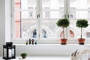 Почему популярны белые пластиковые окна?